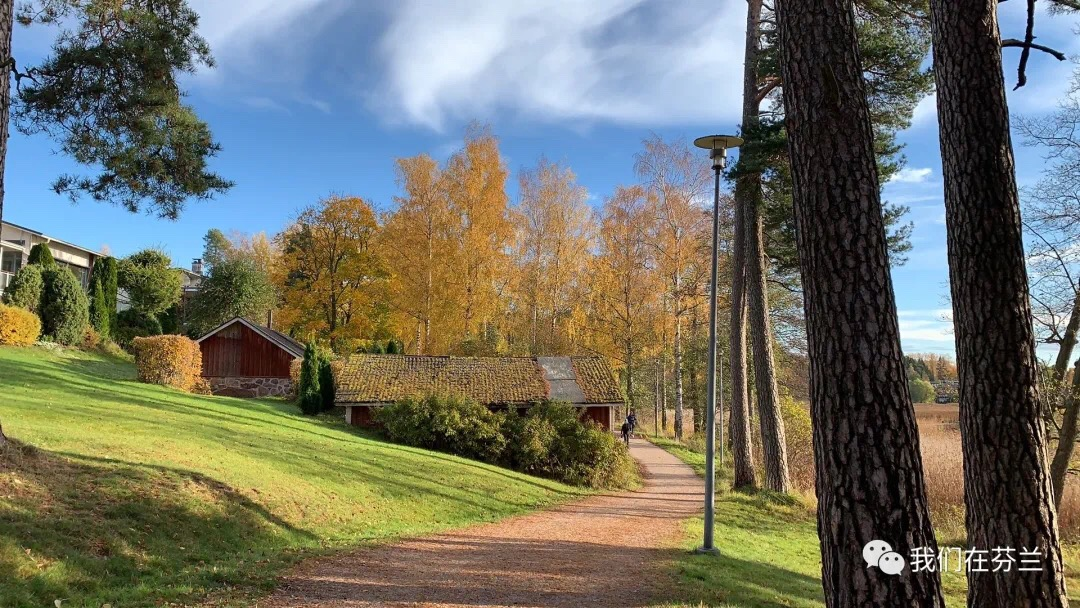 【芬兰照片墙】11月没有雪。